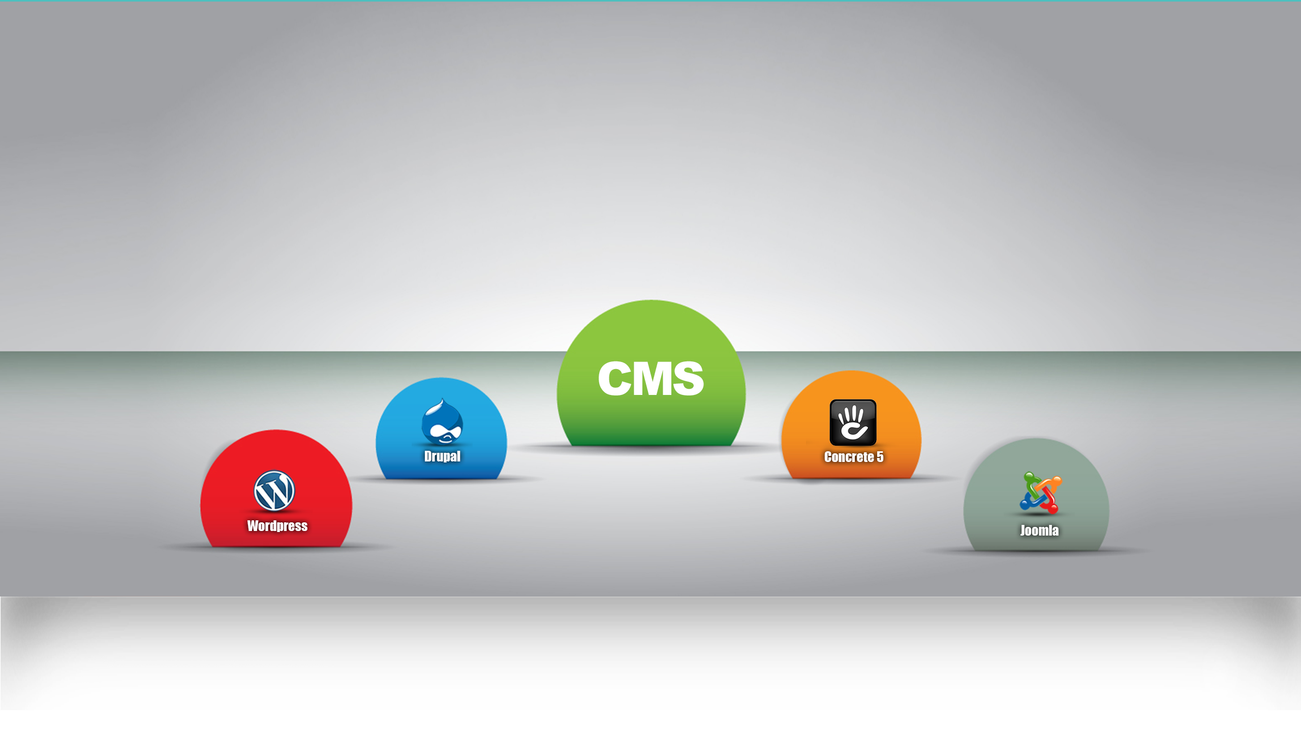 CMS Website Development Services